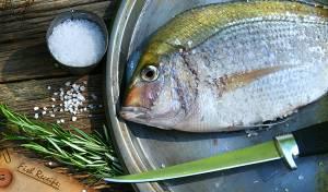 הו, האימה: כשדג חצי אכול קופץ לכם מהצלחת