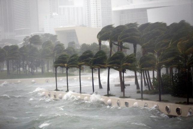 """הסופה: טראמפ הכריז על """"אזור מוכה אסון"""""""