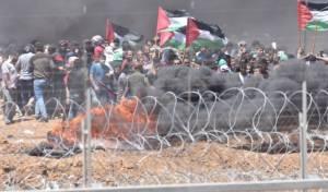 מהומות על גדר המערכת, ארכיון