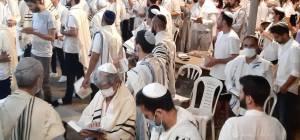 מרגש: המונים בתל אביב בתפילת יום כיפור