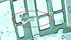 """צפו: נכנס עם נשק שלוף לבית חב""""ד - ויורה"""