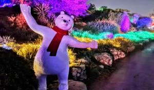 ממלכת השלג בגן הבוטני בירושלים