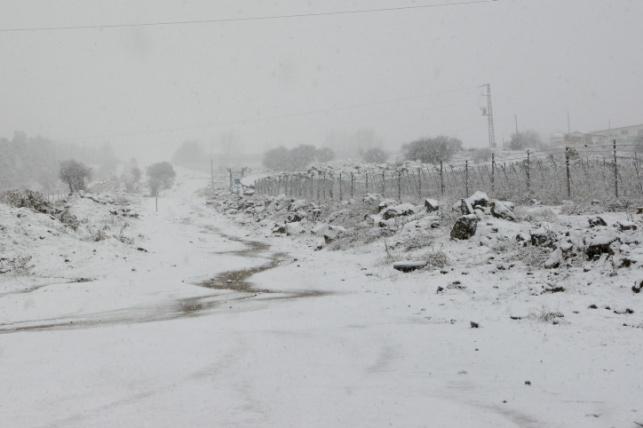 שלג בשבוע שעבר בצפון הגולן
