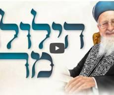 הילולת מרן הרב מרדכי אליהו.