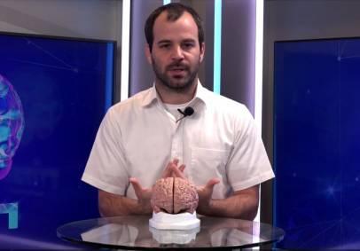 'המוח', פרק 4: כך נשפר את הזכרונות • צפו