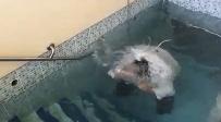 הטבילה במקווה - עם בגדים