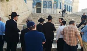יהודים בהר הבית, השבוע