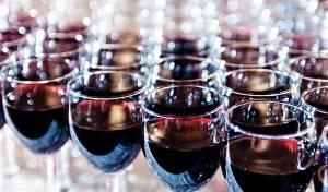 230 שנה של יין ישראלי איכותי - יקב סגל חוגג 230 שנה ומשיק את יין 'דובב ארגמן'