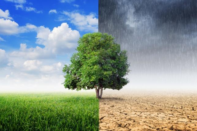 התחזית: הגשם פסק, התחממות קלה