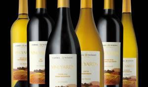 ויניארדס: סדרת יינות מושלמת לרגעים משפחתיים