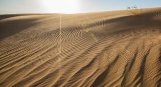 טיול דרך המצלמה לדיונות החול ליד אילת
