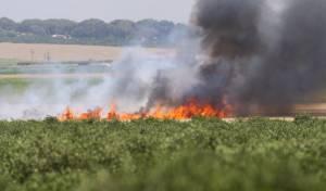 תיעוד אחת השריפות
