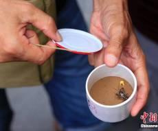 סין: לא תאמינו כמה שווה צרצר קטן וצווחן