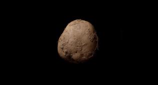 תפוח אדמה #345. הירק הפוטוגני בעולם - לעולם לא תצליחו לנחש כמה עולה התמונה הזו