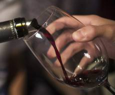 יין. אילוסטרציה
