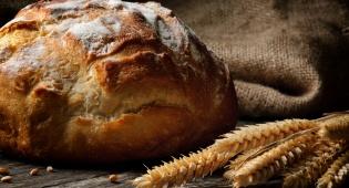 דיאטת מיחזור פחמימות: לא עוד מגמה חולפת