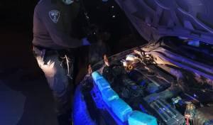 הכלב המשטרתי מצא סמים במכסה המנוע