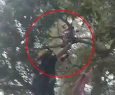 ילד בן 10 נתקע על עץ גבוה • צפו בחילוץ