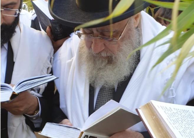 """חבטת הערבה ו'נשמת' עם הראשון לציון הגר""""י יוסף"""