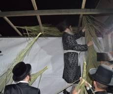 הרבי עלה על הסולם - וסיכך בידיו את הסוכה