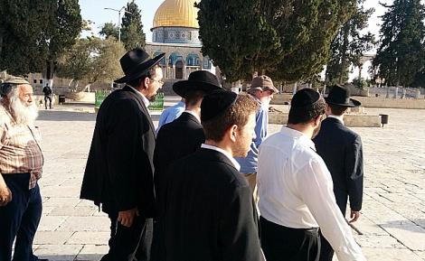 יהודים בהר הבית, הבוקר - לראשונה מהפיגוע: יהודים עלו להר הבית