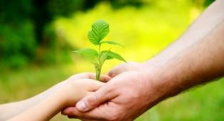 מהי חברות תקינה בין הורה לילדים?
