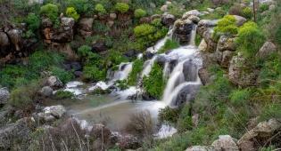 וואו: זרימה מדהימה בנחל דליות ובריכת קשת