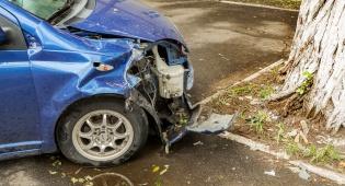 """הרלב""""ד. אילוסטרציה - שליש מההרוגים בתאונות הדרכים הם הולכי רגל"""