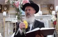 """הגר""""א יוסף מסביר: כך תנענעו ד' המינים"""