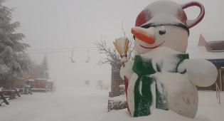 """12 ס""""מ שלג בחרמון: צפו בתיעוד מרהיב"""