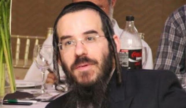אלי זלמנוביץ, כותב השורות