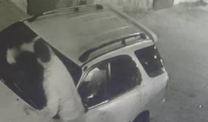 צפו: מדביקי מודעות 'הדביקו' את רכב החרדי