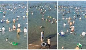 תיעוד הצפיפות בחופים נפרדים: 4 מצילים על אלפי אנשים