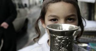 (צילום: פלאש 90) - מעשה מופלא: גביע הכסף של רבי דוד