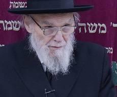 הגאון רבי משה הלל הירש - קרב הגזירה: כך ניסו לשכנע את הרבנים