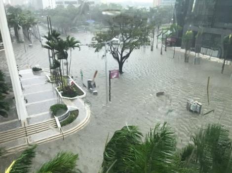 מתחילים לאמוד את הנזק האדיר בפלורידה