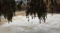 צפו: זרימה חזקה בנהר הירדן - ברקע החרמון