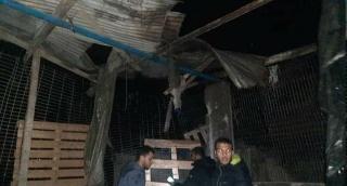 בית שנפגע מהתקיפה, לכאורה