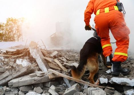 אילוסטראציה - בקרוב תהיה רעידת אדמה חזקה בישראל