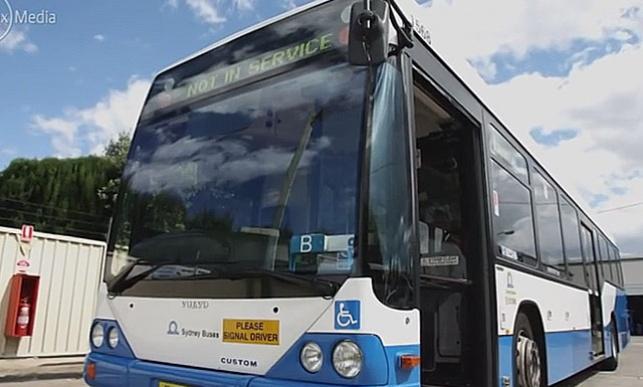האוטובוס בו הותקפו