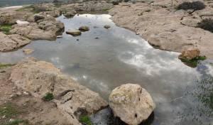 בריכות החורף בדרום התמלאו מים • תיעוד