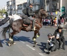 סוס משטרתי בהפגנת 'הפלג'