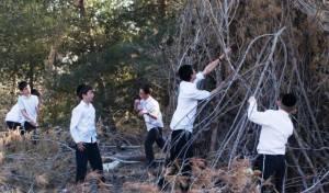 """ל""""ג בעומר: ילדי ירושלים נערכים"""