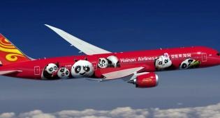 מטוסי הפנדה של החברה הסינית בישראל • צפו