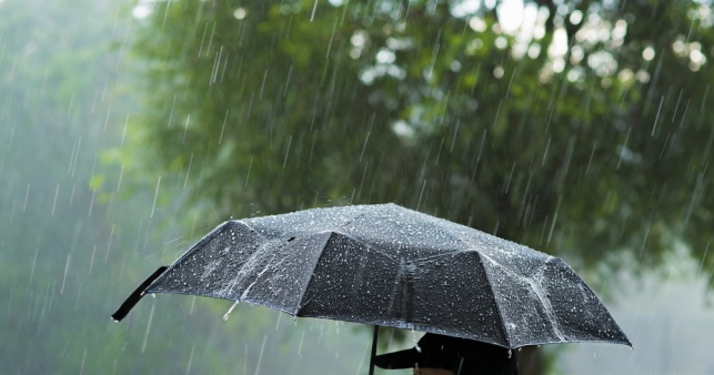 התחזית: גשם מקומי ירד ברוב חלקי הארץ