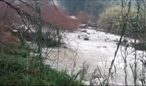 צפו בזרימות הסוערות במקורות המים בצפון