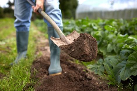 החקלאי ניצח. אילוסטרציה - חקלאי ניצח את ״הראל״ – יפוצה על ציוד שנשרף
