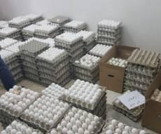 ארכיון - סייע בהברחת מיליוני ביצים ויישלח לכלא