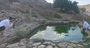 אילוסטרציה - המעיין ליד גבעת זאב הזדהם ונאסר לשתייה