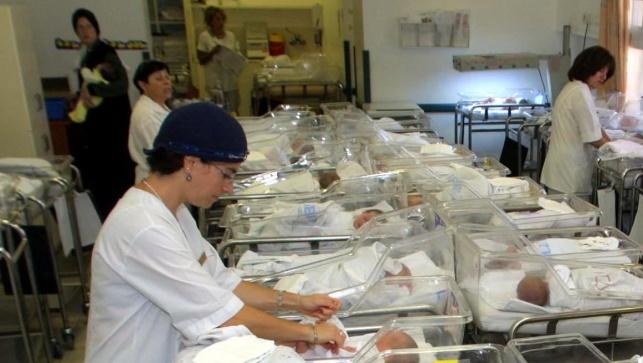 תינוקות ואימותיהם, במחלקה